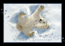 Playful Snow Angel Holiday Cards